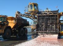 Récolte du sel au salin d'Aigues Mortes