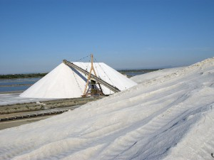 camelles de sel à Aigues-Mortes