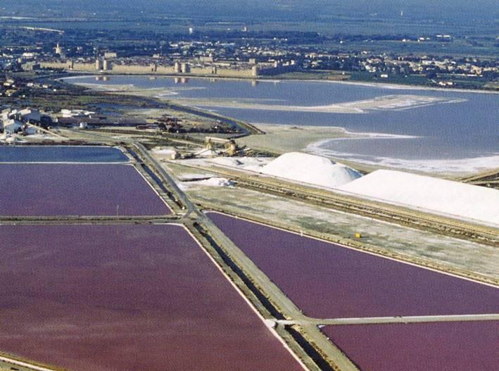 Visitez notre site de production d'Aigues Mortes
